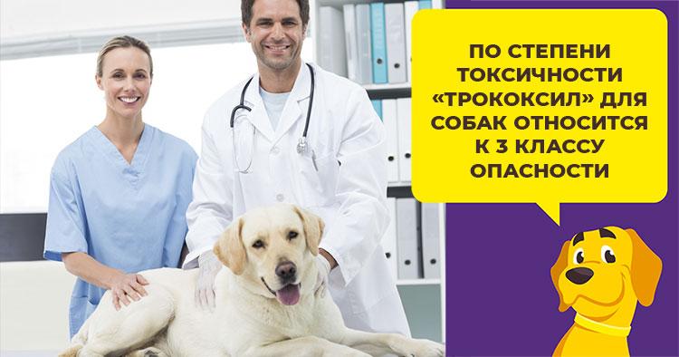 Трококсил для собак инструкция