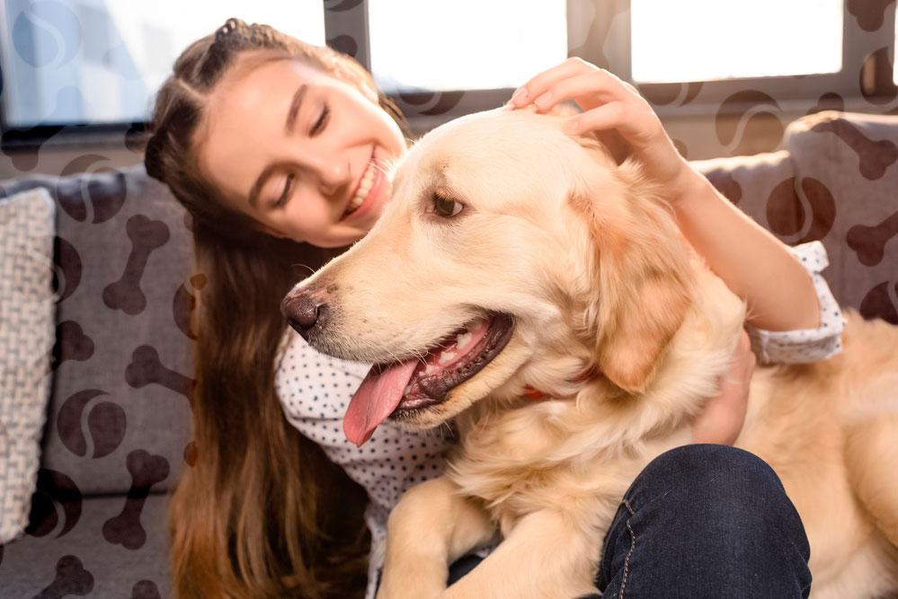 Инструкция по применению азинокс плюс для собак