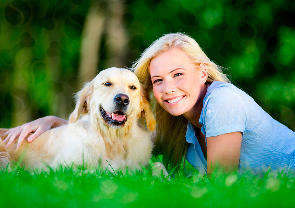 Инструкция по применению таблеток мильбемакс для собак