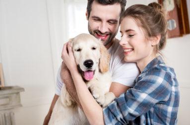 Вы уверены, что знаете, какие субпродукты можно давать собаке?