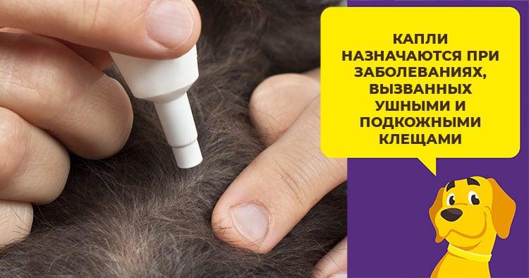 Амит и Амит Форте - препарат против ушных и подкожных клещей у собак