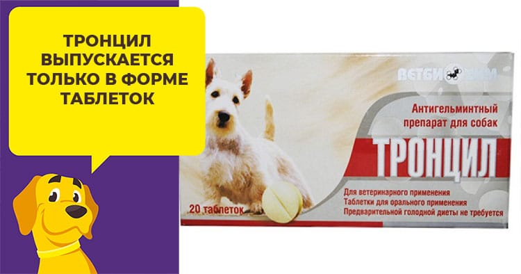 Как используют глистогонный препарат Тронцил для собак