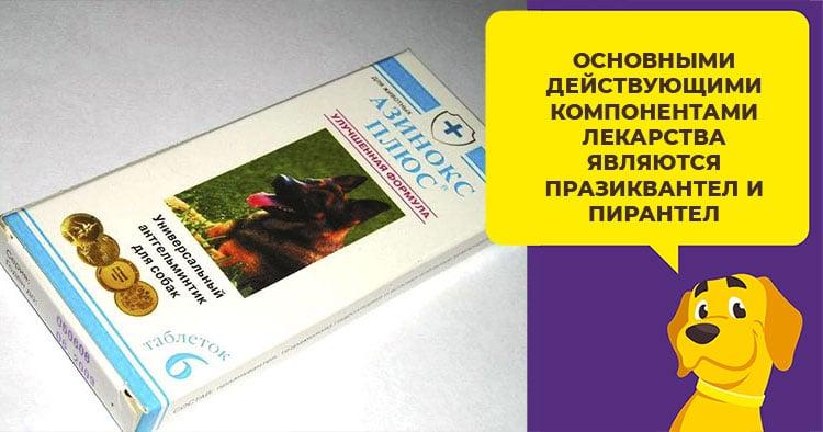 Все, что нужно знать о препарате Азинокс плюс для профилактики гельминтов у собак