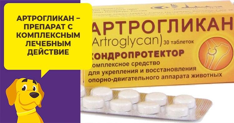 Артрогликан - препарат для лечение суставов у собак