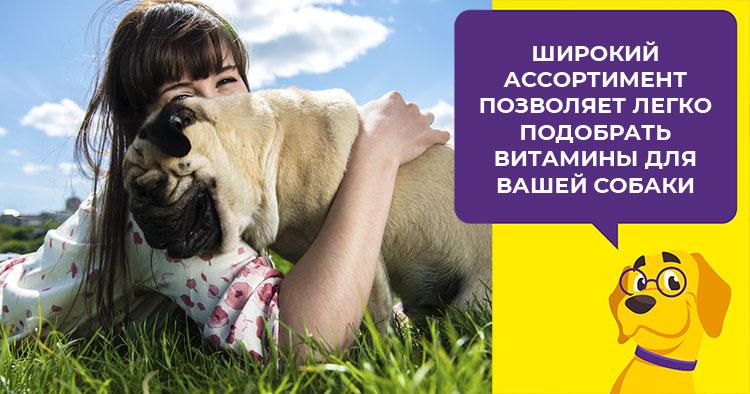 обзор серии витаминов canina (канина) для щенков и взрослых собак