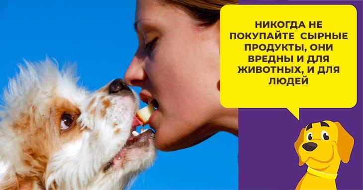 Самые пушистые породы собак: от гигантов до малышей