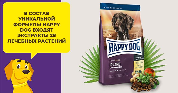 Какой сухой корм лучше подойдет для собаки породы хаски
